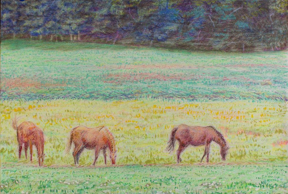 Three Horses R.jpg