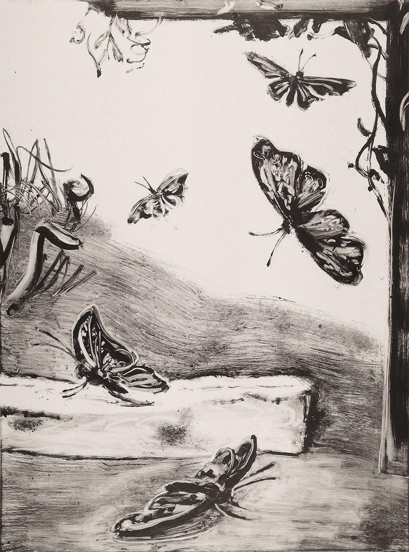 """Butterflies, 2018 Monotype. 24"""" X 18"""""""