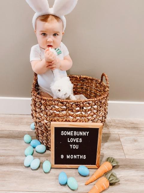 baby bunny photos