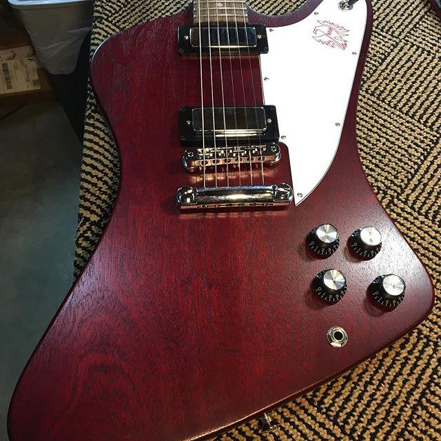 #gibson #gibsonfirebird #luthier