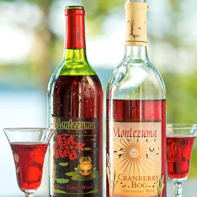 Montezuma Winery - Seneca Falls, NY