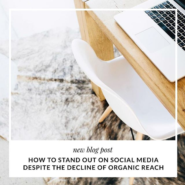 Organic reach is in decline and it's changing the way businesses use social media. Facebook's organic reach declined by over 50% in 2016, signifying how important it is for you to understand algorithms and best practices. 📊💻 Your once effective social media strategy is no longer working in your favor and it's time for a major change if you want to stay in the social media game. 🎳📈 We're sharing 4 ways to to combat the decline in organic reach on the blog, like how to stand out as a thought leader in your community. Click the link in bio to ensure your social ROI doesn't decline too! 👆🏽