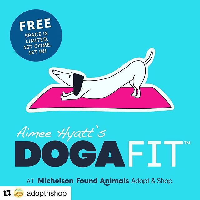 I look forward to teaching my #DogaFit class @foundanimals on Saturday, January 28th from 10AM to 12PM.  If I can help make one dog more adoptable thru my #calming & #bonding techniques, then my mission will be accomplished.  Let's adopt ALL OF THEM!!! See you there. 🐶🙏🏼👍🏼🙌🏼🙌🏼 #doga #dogadoption #yogawithdogs #caninemassage #dogmassage #acupressure #hearttohoundpose #rescuedogsofinstagram #rescuedog #rescuedogs #dogs #dogstagram #dogsofinsta #dogsofinstaworld #dogsandpals #dogsofig #dogslife #dogsandpals #pupstagram #pups