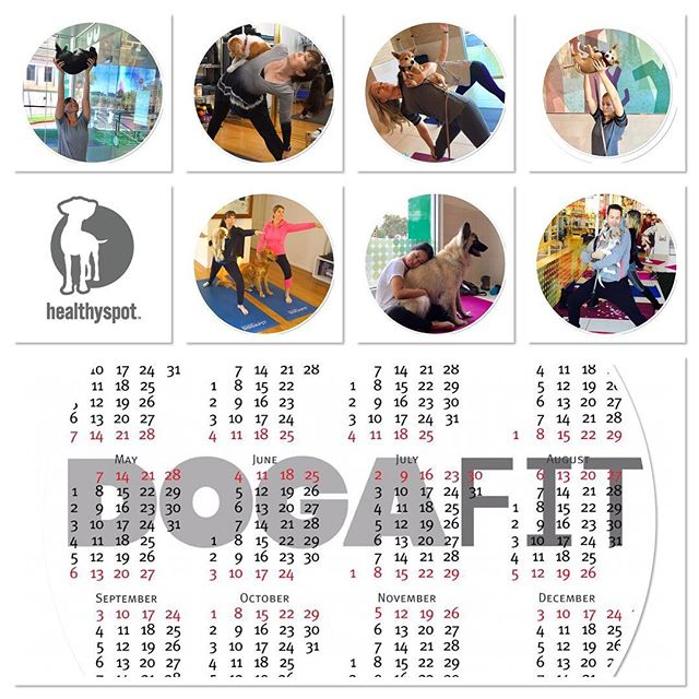 #DogaFit schedule @healthyspot.  Please make note of the different locations:  Sunday, February 12th 10AM to 11AM. Palisades Park #palisadespark.  Sunday, February 19th. 10AM to 11:00AM.  West Hollywood #weho.  Sunday, March 5. 10AM to 11AM.  Special Location. #staytuned!  Sunday, March 12th. 10AM to 11:00AM.  Santa Monica #santamonica.  I will let you know if there are any changes in dates or locations.  See you there! 🐶🙏🏼🐾❤🐾