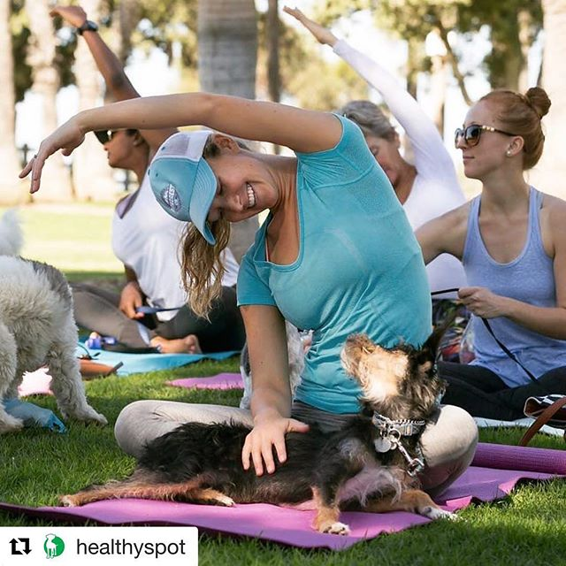 Here we go again...we're back at Palisades Park on February 12th thanks to Healthy Spot.  @healthyspot @alwaysierra!  These classes at the park are #pawsome!  Remember: all #doggies must be on a leash; no treats or food... only water for the dogi's & you.  See you all there! 🐶🙏🏼🐾❤🐾