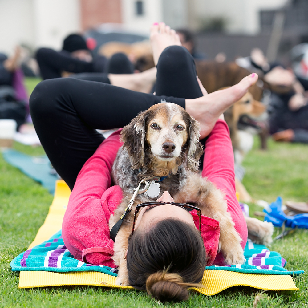 DogaFit at Your Event