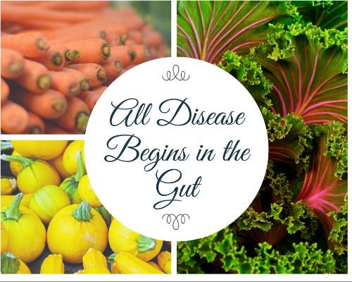 All-Disease-Begins-in-the-Gut.png
