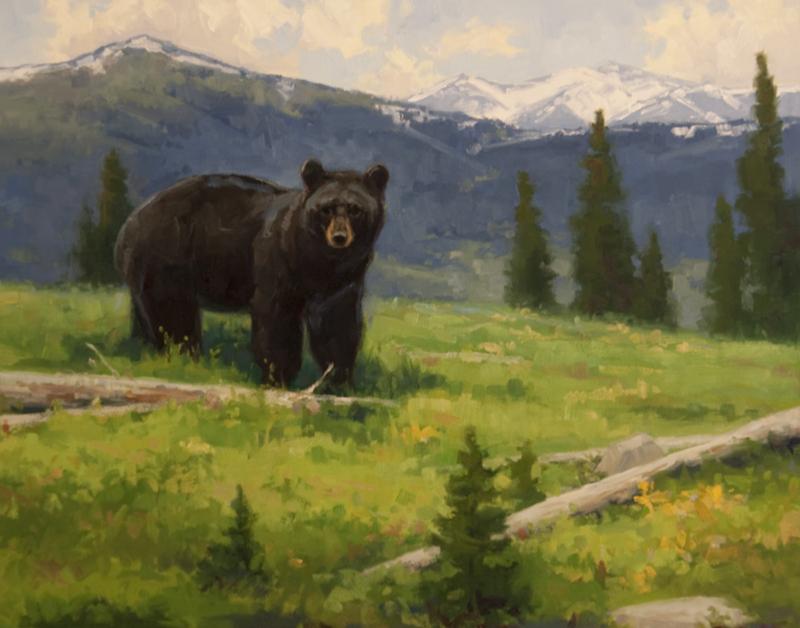 Black Bear 16x20.jpg