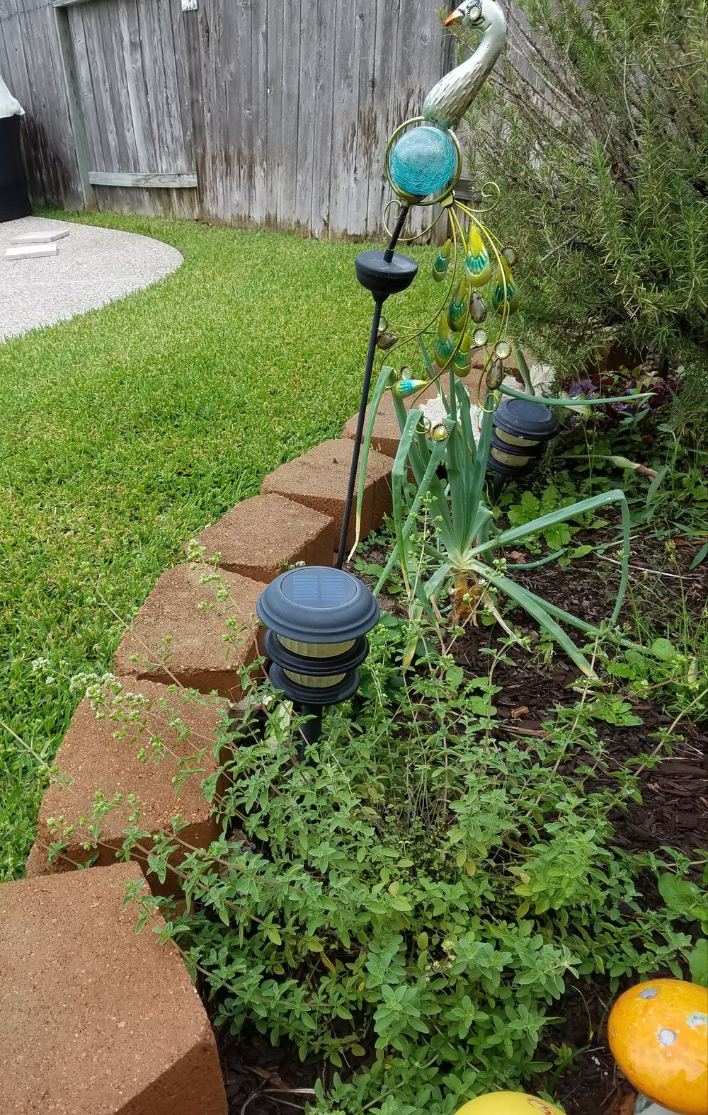 Mama Yardful's raised garden beds - plants from top to bottom: rosemary, onion, strawberry, oregano