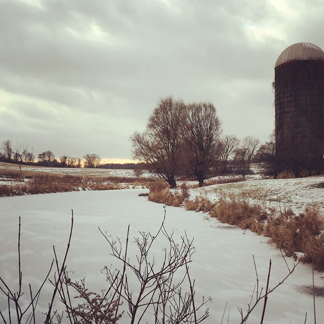 There is something so peaceful and pure in this white blanket over the farm, nature is asleep ❄️#winteratthefarm #peacefulsnow #loneoakfarm #whiteholidays #dutchesscounty #hudsonvalleyfarms