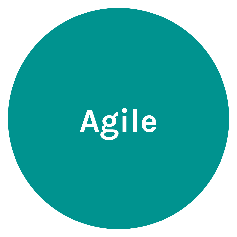 Agile_bol_teal.PNG