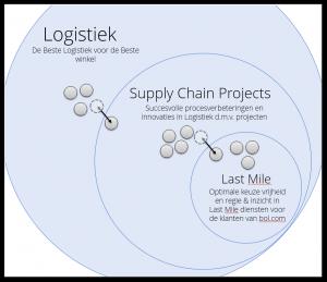 organisatiestructuur-300x259.png