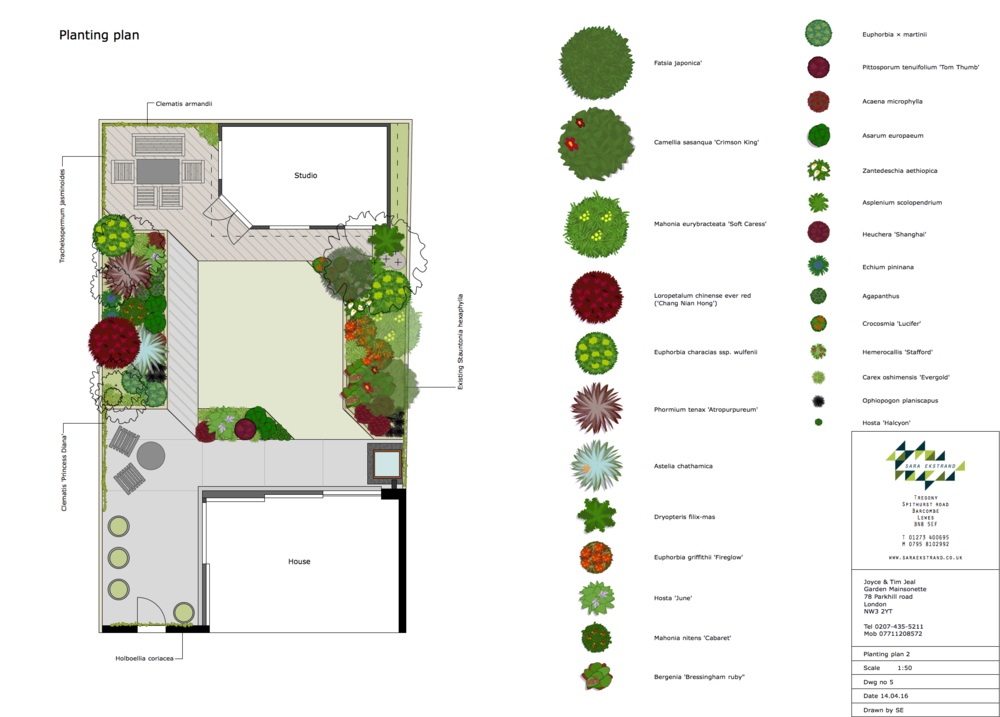 Jeal Planting plan.png