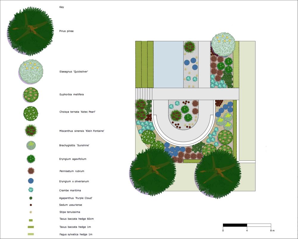 Seaside planting plan.png