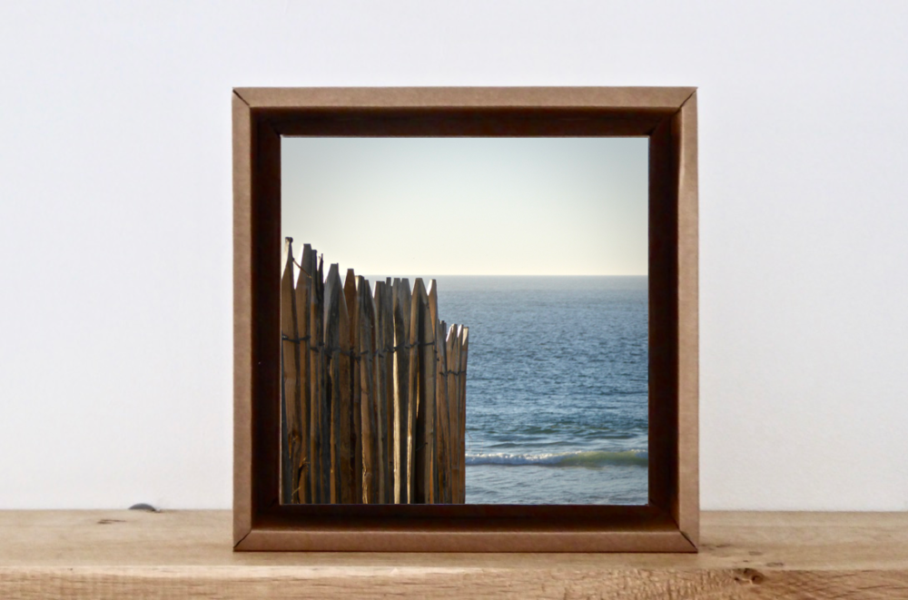 photo-ocean-carton-recycle.png