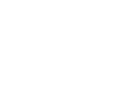 Aviation Virtual