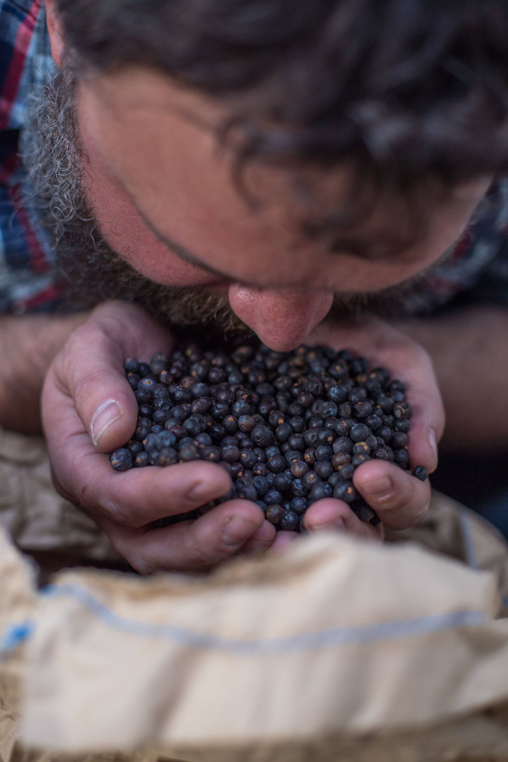 Shaun smells a handful of dried juniper berries from one of the ingredient sacks kept in storage, combinations of which are used to flavour the different gin varieties they produce.
