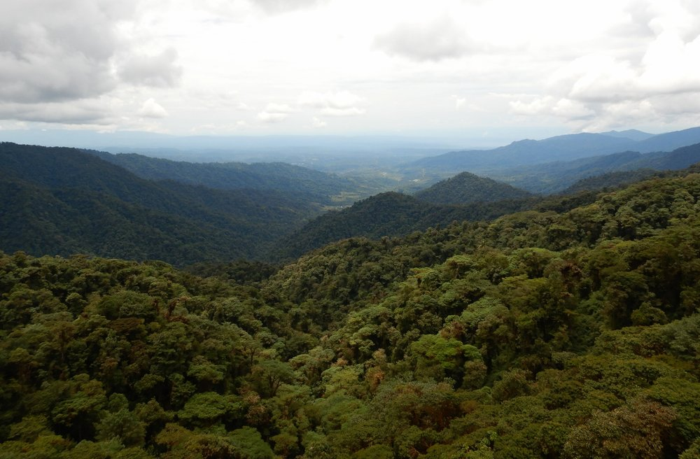 Looking east over the Amazon rainforest (despite poor visibility) from the Andes mountain range.