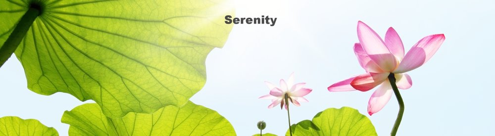 SERENITY EXPERIENCE @ £55 per person   Glass of Prosecco on arrival Lemon Water & Sparkling Water Sweet & Savoury Platters  Almond & Honey Milk Foot Bath Indulgence Hamper Nail Bar  30 mins Massage per person 30 mins Treatment of Choice* per person