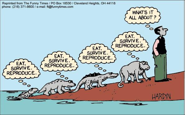 Evolutie, de truc van het leven. Waar het om draait? Eten, overleven, voortplanten, eten . . .