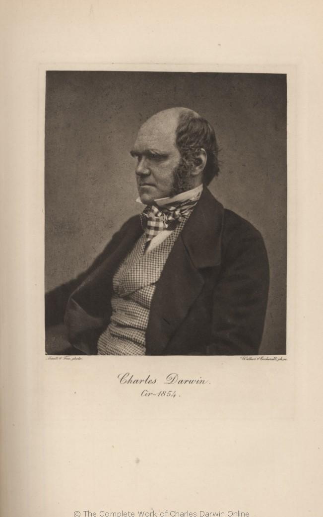 Charles Darwin op 45-jarige leeftijd, vijf jaar voor zijn publicatie van The Origin.