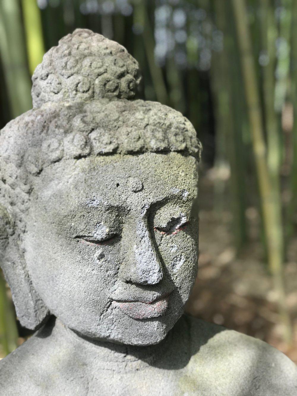 buddha .JPG