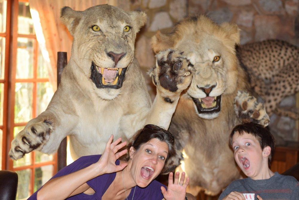 """Run Away!"" Lion Attack!"