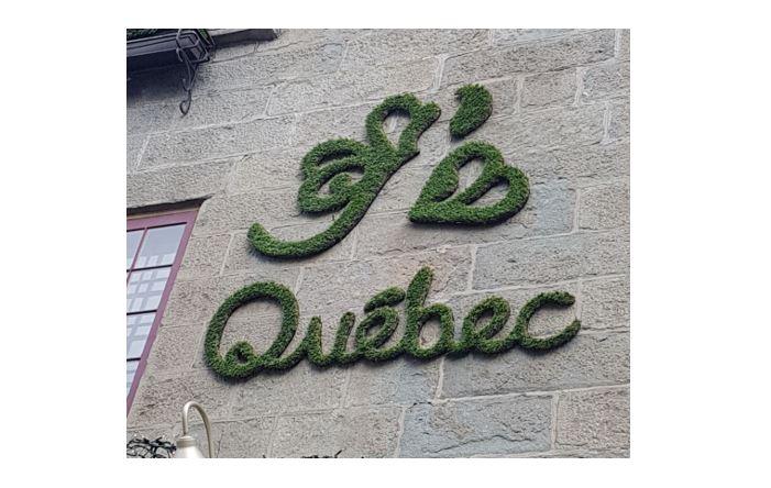 Quebec Pic 1.JPG
