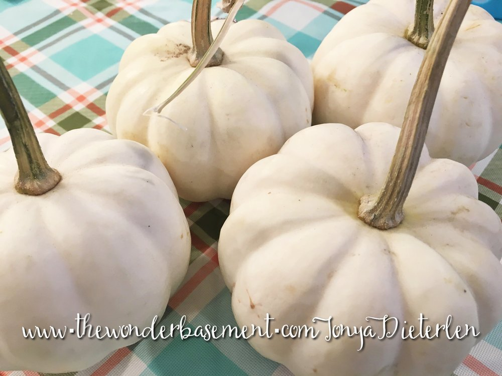 White mini-pumpkins go glam!