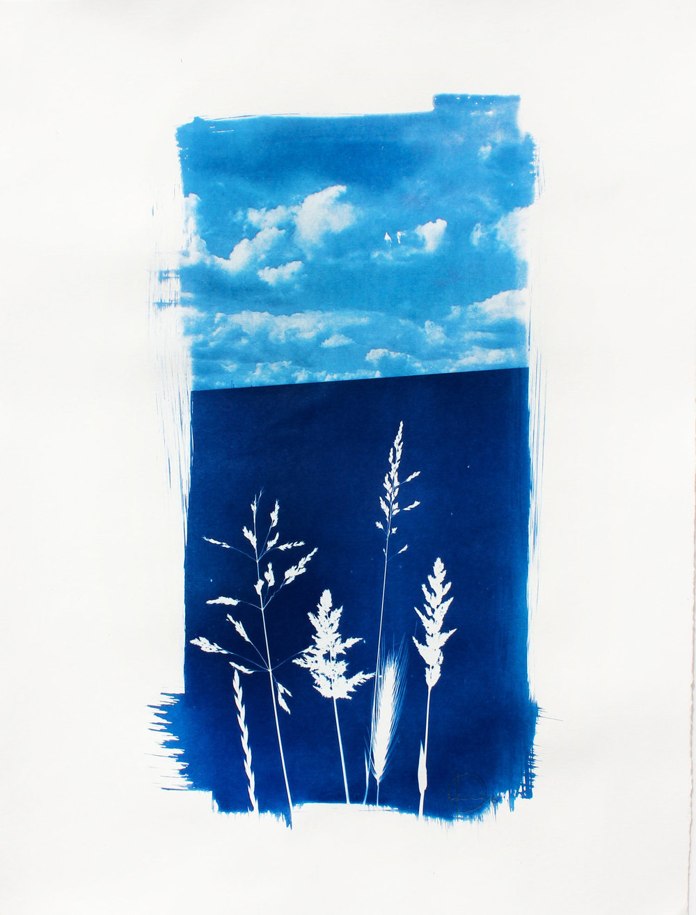 Contact Negative Craig Keenan 55cm x 66cm  Cyanotype One Off For more info on the piece click here