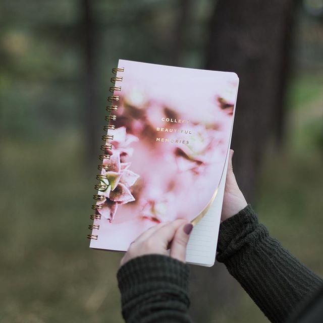 Collect beautiful memories. 🌿✨ #fringestudio