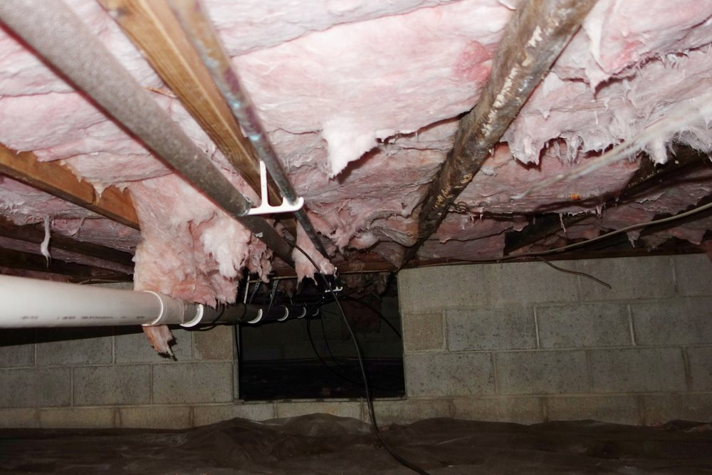 """Check out the discoloration on the vertical floor joists above. That's what the inspector called """"past evidence of microbial growth"""", aka mold. It was all dead, but I sprayed it all again with bleach just to be sure."""
