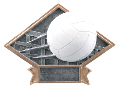 MINNEAPOLIS-TROPHIES-VOLLEYBALL.JPG