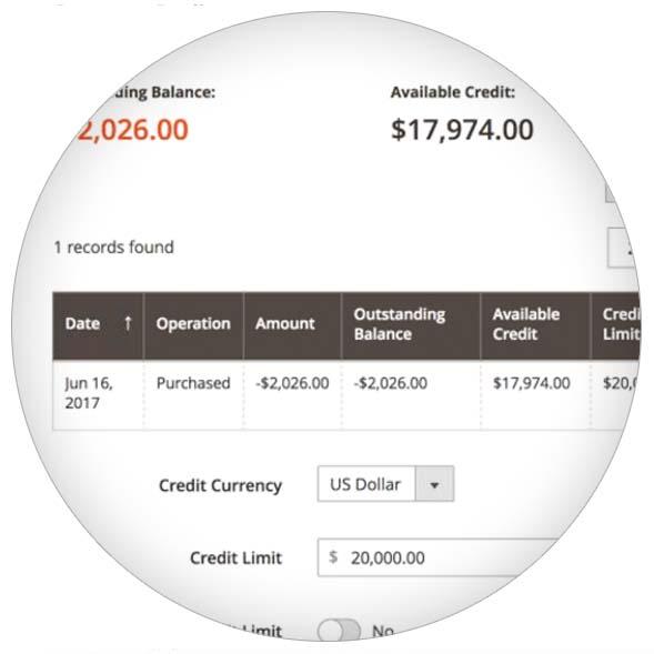MediaCT Magento B2B payments