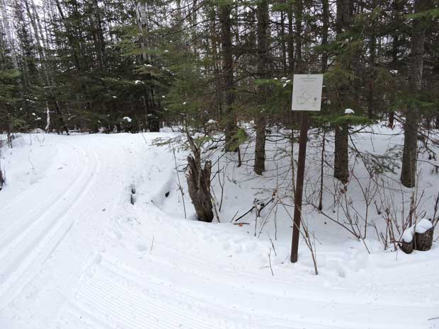 Echo Bay Ski Trail