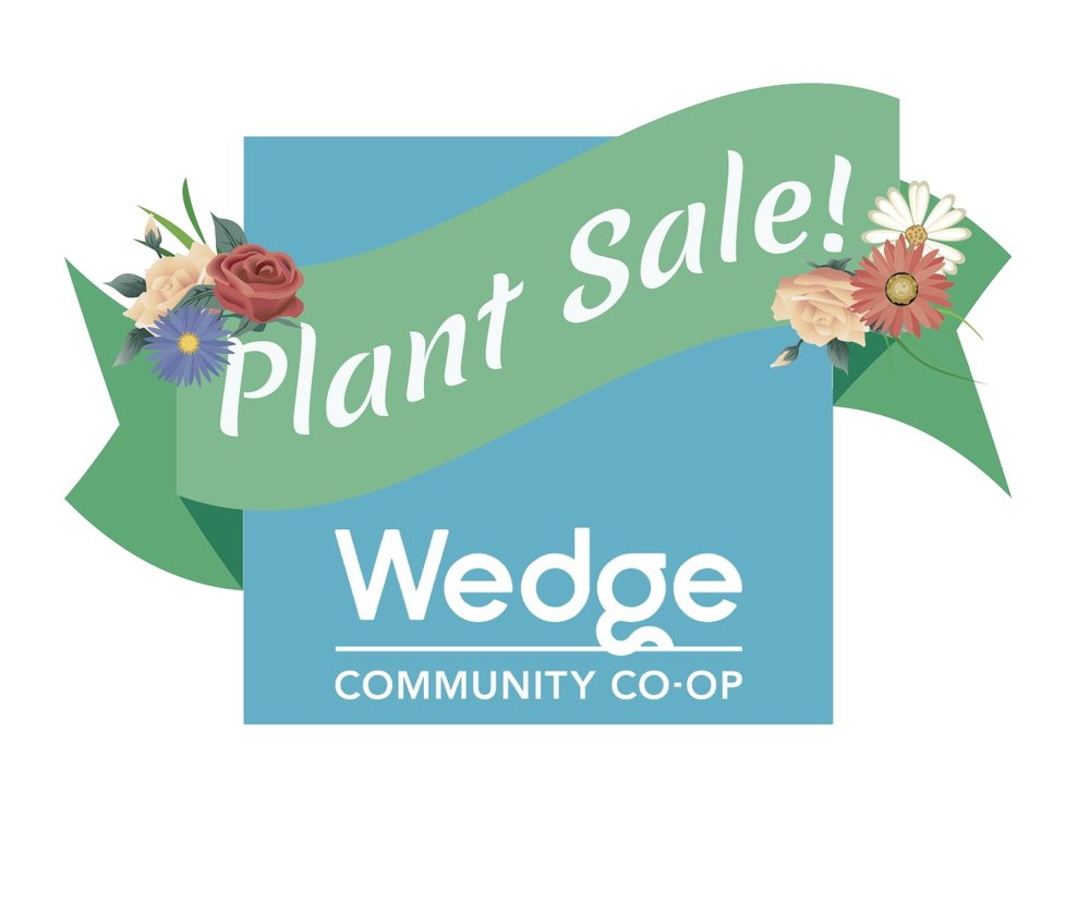 """The Wedge Plant Sale - I made this mock up for the Wedge Co-op's Spring Plant Sale. I love the brand, and it happens to be my longtime employer. The Wedge's aesthetic is clean and modern,but also playful and homey. """"Wedge Blue"""" is critical to the Co-op's brand identification so you will see it featured prominently in my designs."""