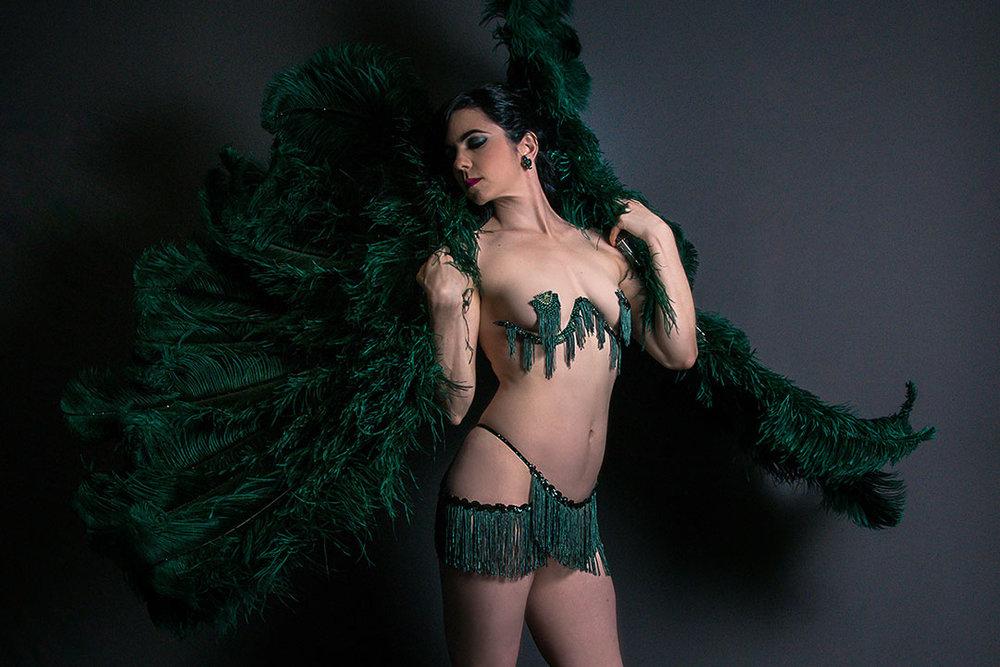 DSC_0008-Cropped Wings Lo Rez.jpg