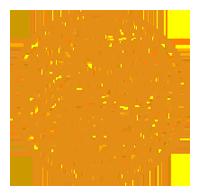 emblem-orange.png