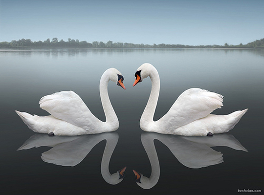 reflectionphotos20.jpg