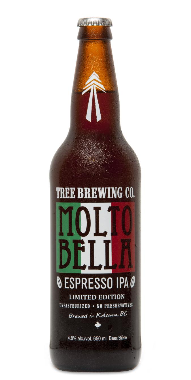 MOLTO BELLA.jpg