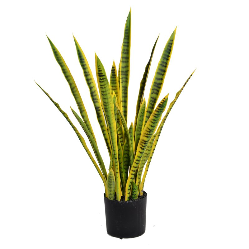 sipdinedesign artificial plants allergy 2.jpg
