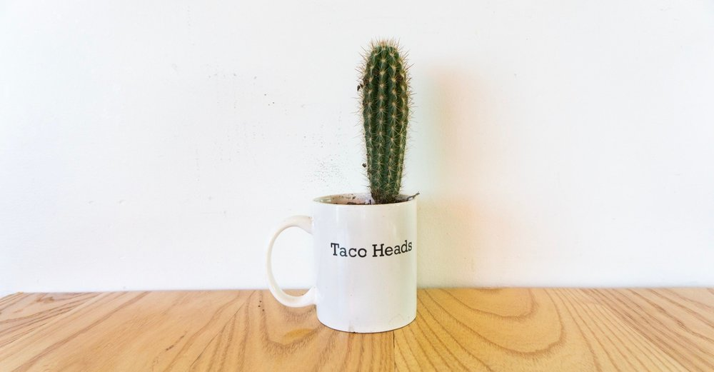 taco heads Fort Worth Texas
