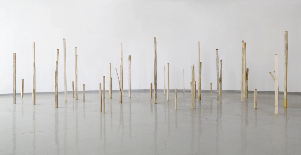 Hyejin Jo, A Usable Tree, 2015