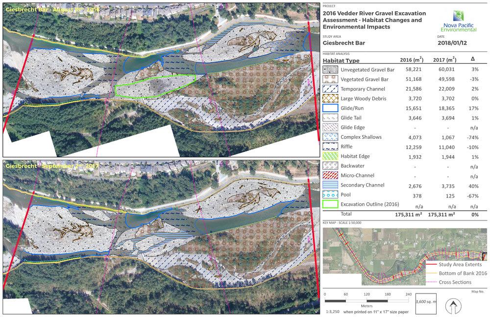 Habitat Change Along the Vedder River