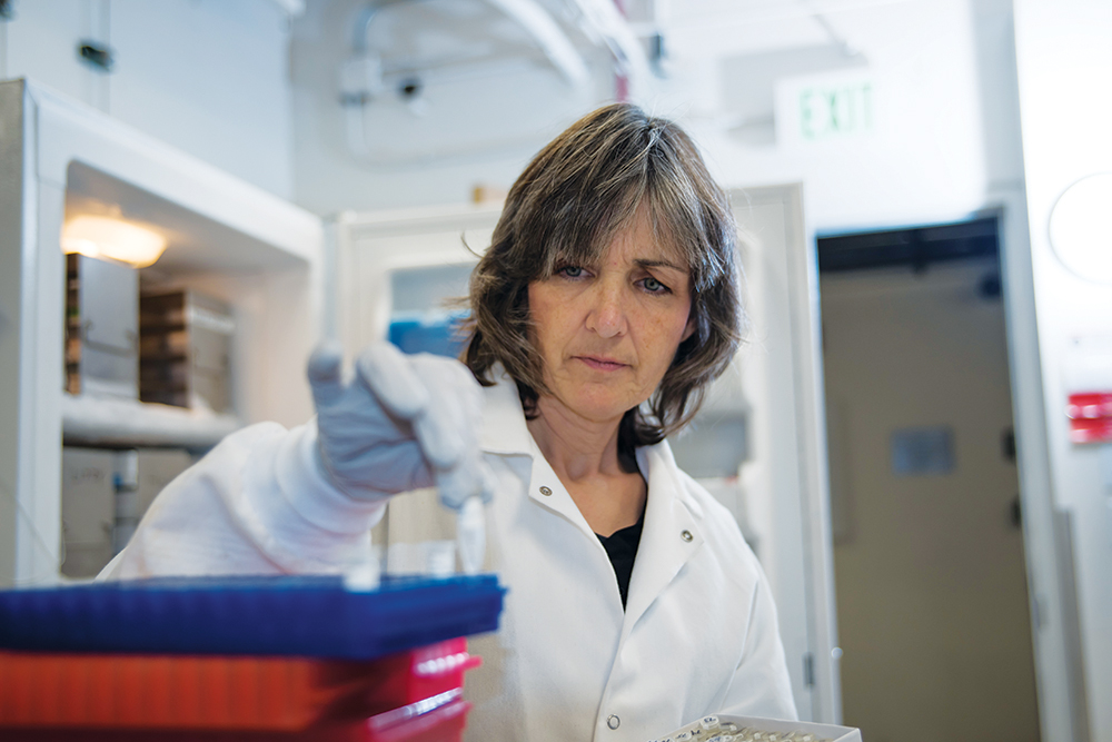Research scientist Patricia Tavormina removes a small amount of Aliso Canyon soil from frozen samples for DNA extraction as part of a collaboration with Victoria Orphan.