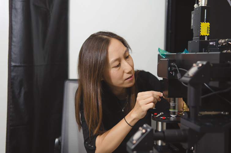 Neuroscientist Elizabeth Hong uses a two-photon laser-scanning microscope that can peer deep into a living fly's brain.