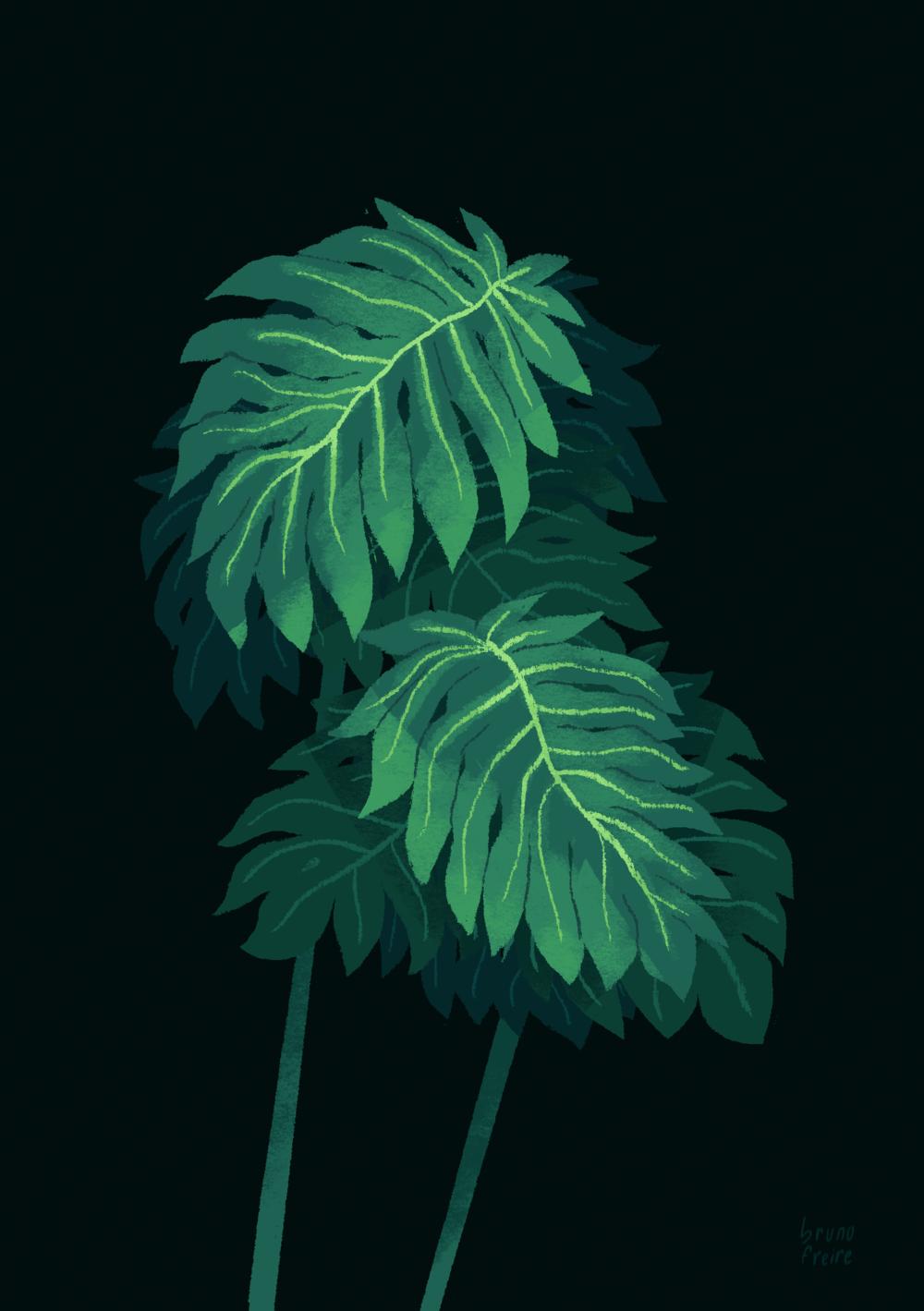 Folhas