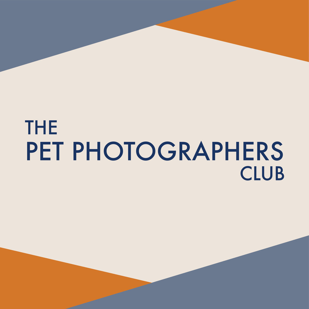 the-pet-photographers-club