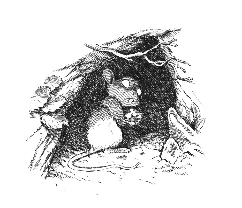 mouse cave.jpg
