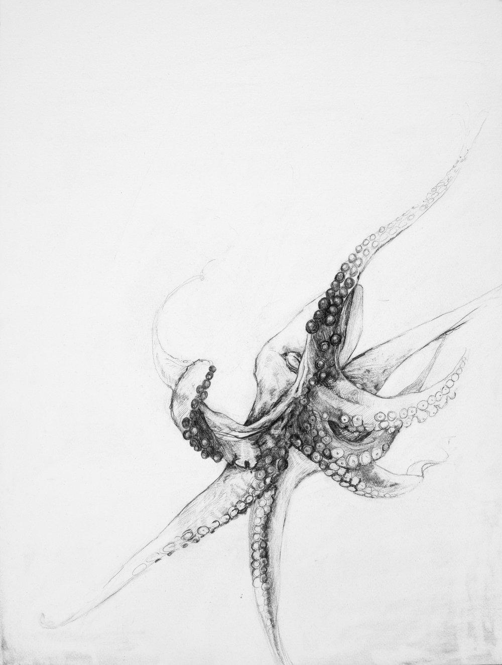 Octodrone